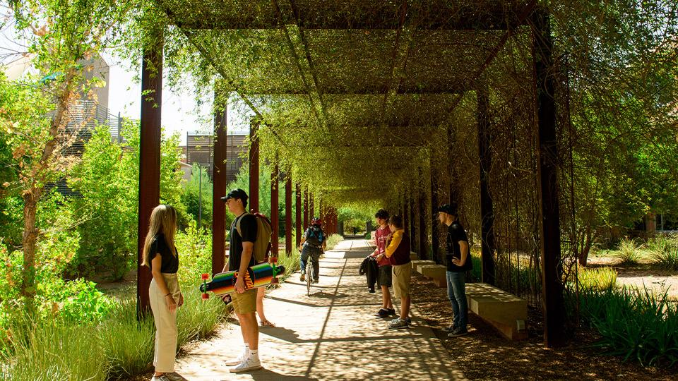 Students talking under an ivy-laden awning.